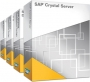 SAP Crystal Server 2013 Win 5 Named Users met 1 jaar upgrades en support